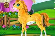 Забота о лошади пони